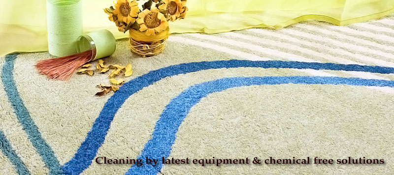 Carpet Cleaning Long Point