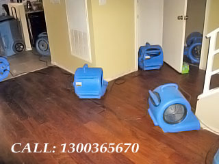 Powerful Drying Motor For Dry Carpet Oakville