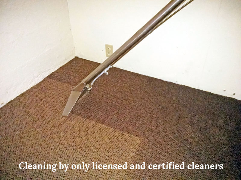 Carpet Water Extraction or Carpet Water Removal Round Corner