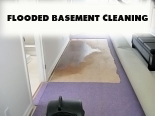 Carpet Flood Cleanup Waterfall