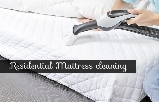 Mattress Odor Removal Mascot