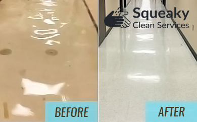 Flooded Basement Cleaning World Square