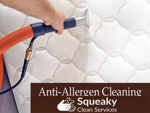 Quick Mattress Cleaning Bow Bowing