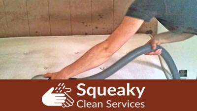 Mattress Bug Removal McCarrs Creek